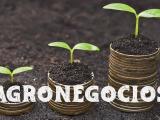 AGRONEG3C+i. Una Nueva Visión de losNegocios